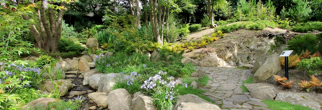 Contract Awarded for The Lafcadio Hearn Japanese Gardens